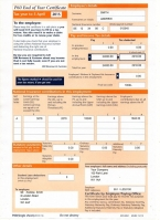 HMRC P60 2014/2015 Orange Portrait